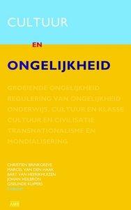 Brinkgreve, e.a. – Cultuur en ongelijkheid